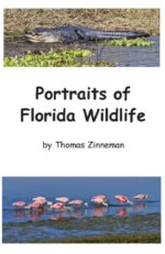 249 FL Wildlife Cover LoRes
